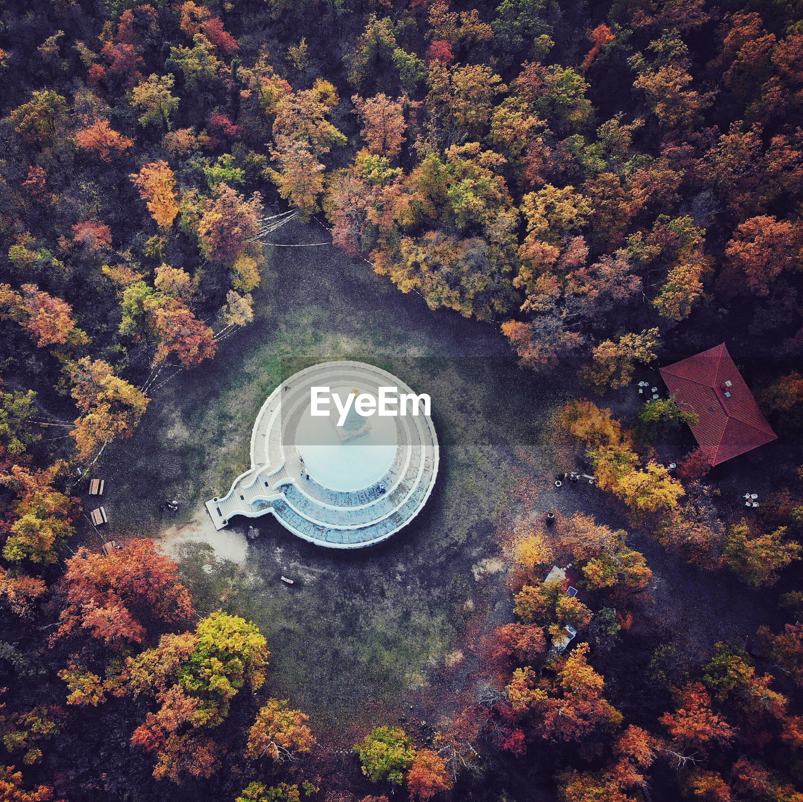 Aerial view of stupa amidst autumn trees