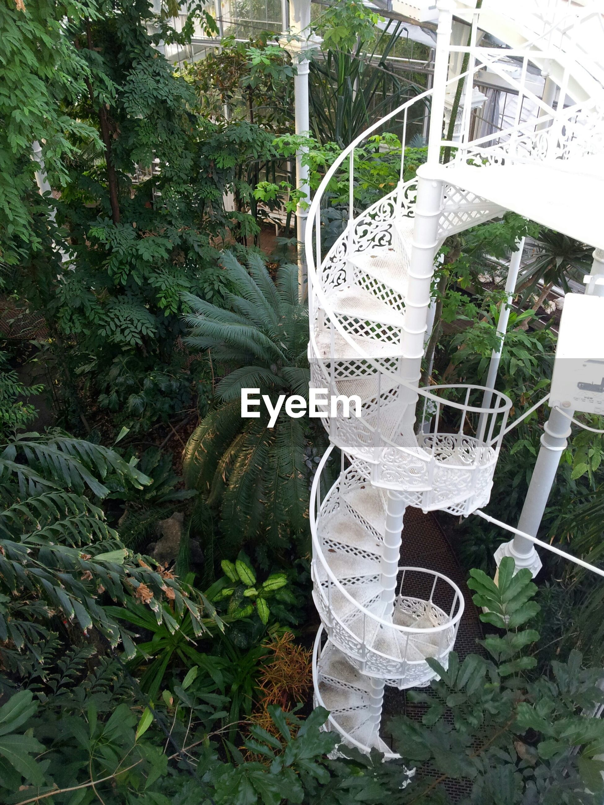 High angle view of spiral staircase in park