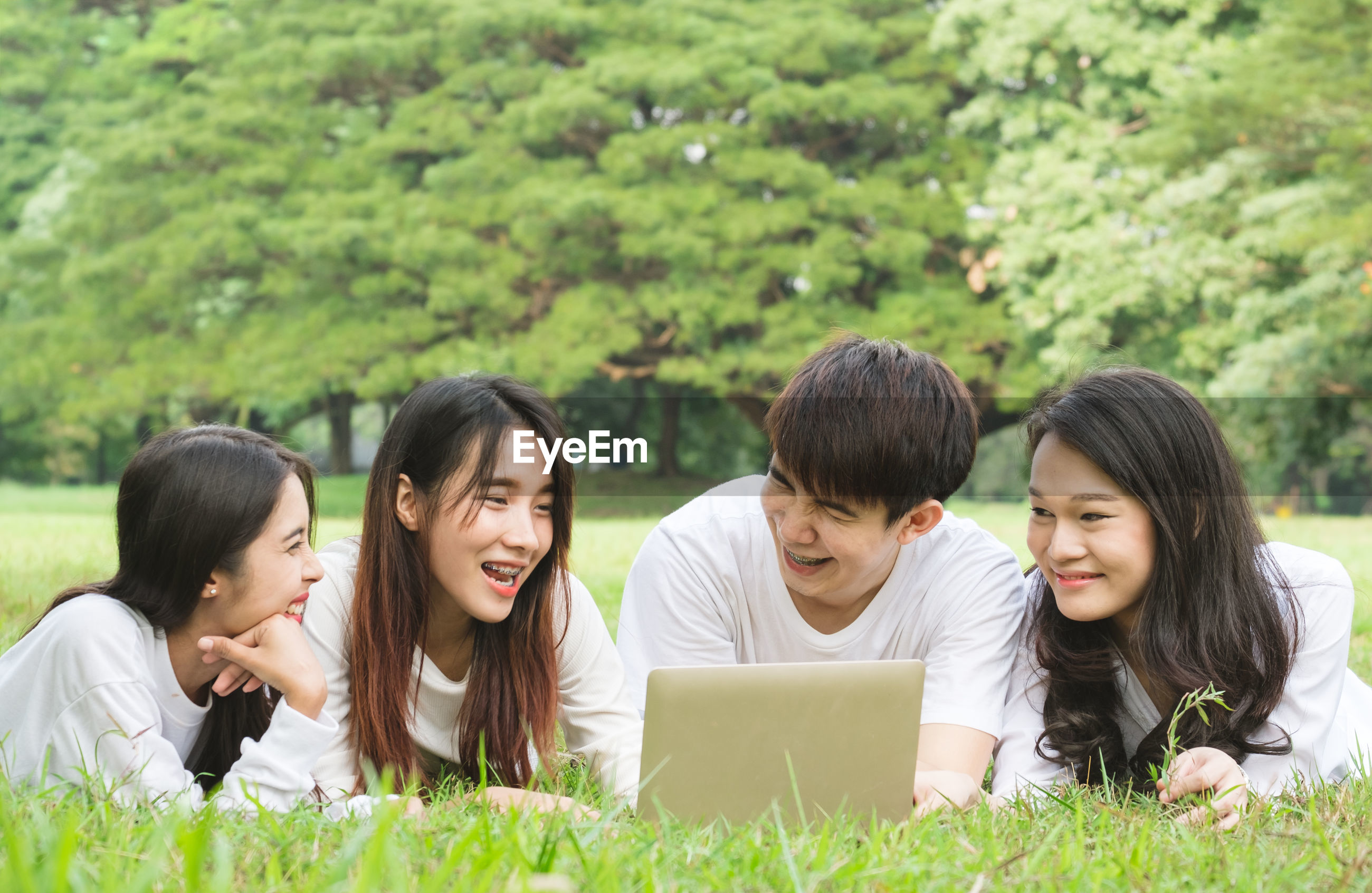 Smiling friends using laptop on lawn