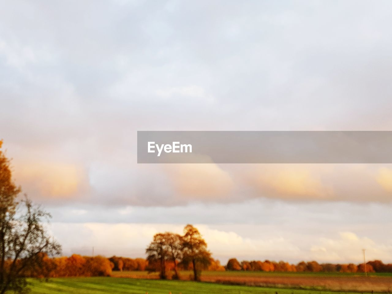 cloud - sky, sky, environment, landscape, beauty in nature, tranquil scene, scenics - nature, plant, tree, tranquility, field, nature, land, no people, non-urban scene, grass, rural scene, outdoors, growth