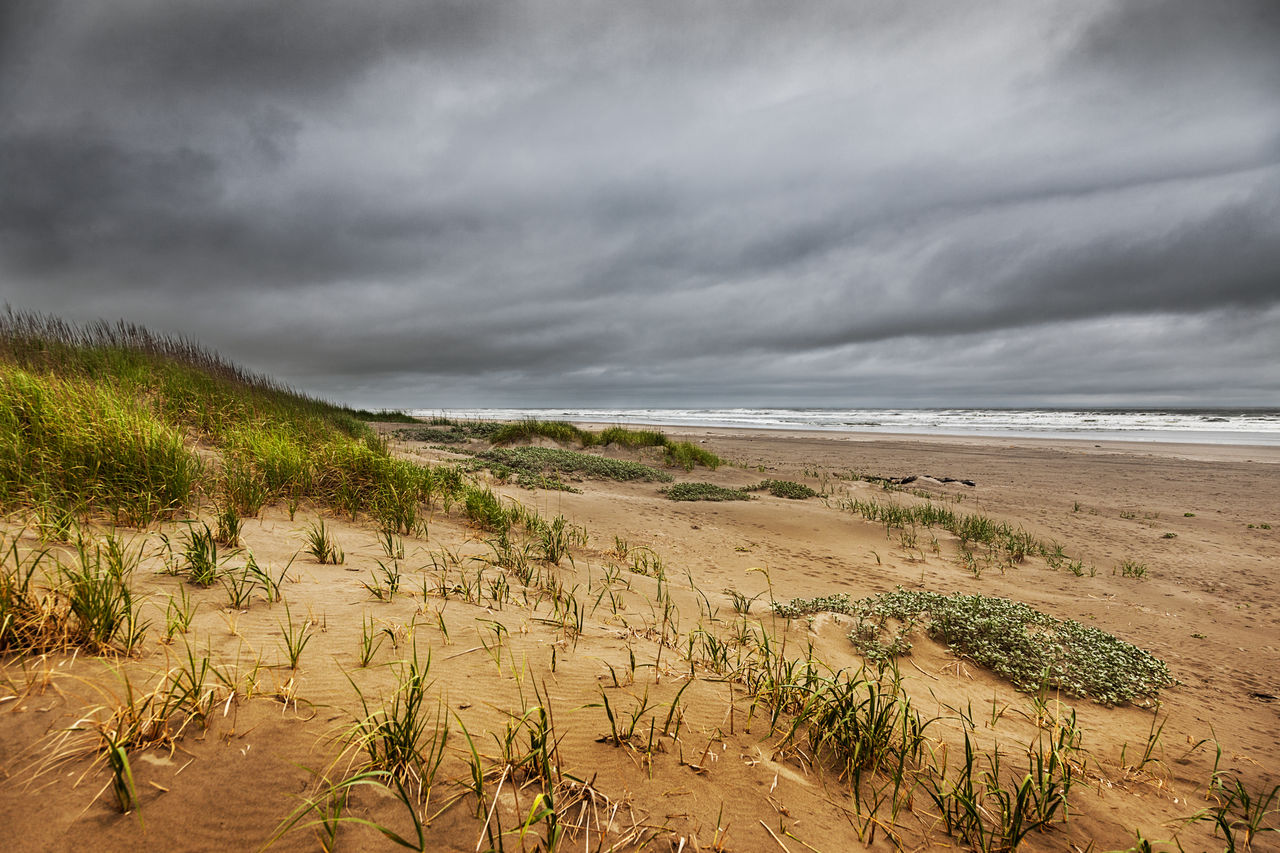 nature, cloud - sky, sky, beauty in nature, sand, scenics, beach, sea, water, tranquility, tranquil scene, no people, outdoors, landscape, horizon over water, storm cloud, day, growth, grass