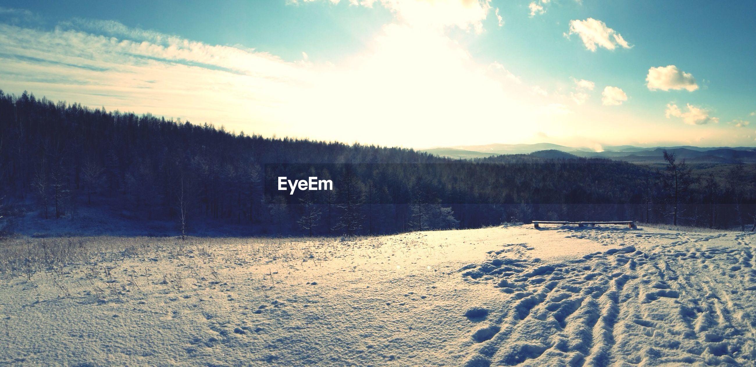 snow, winter, cold temperature, tranquil scene, tranquility, landscape, sky, scenics, season, beauty in nature, nature, weather, covering, cloud - sky, tree, mountain, non-urban scene, sunlight, white color, cloud