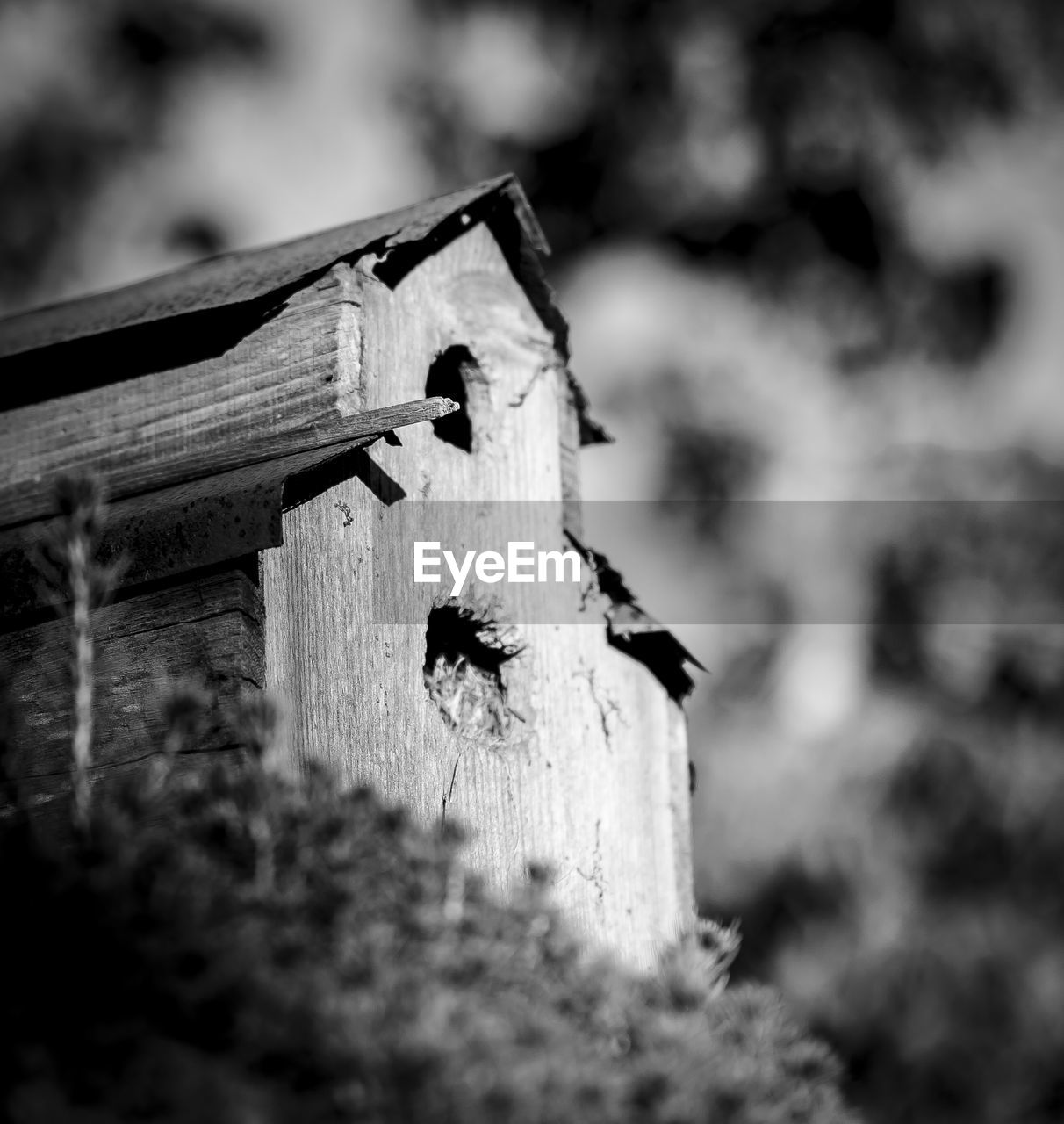 Low angle view of wooden birdhouse against trees