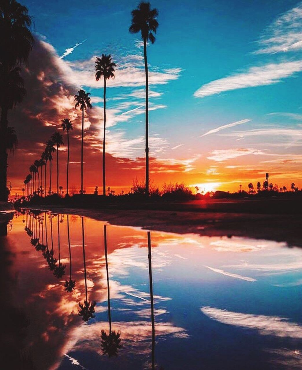 reflection, cloud - sky, sky, sunset, palm tree, water, silhouette, tree, scenics, outdoors, beauty in nature, no people, tranquil scene, nature, sunlight, lake, tranquility, blue, reflecting pool, travel destinations, dawn, multi colored, day