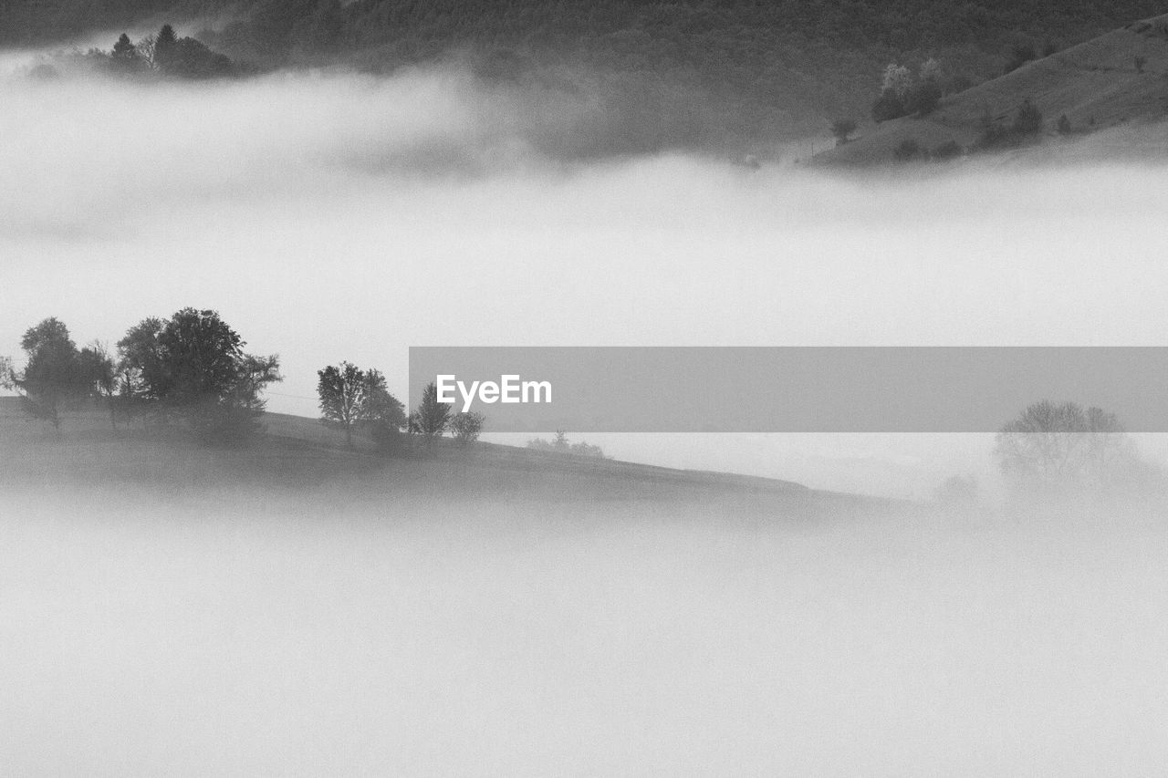 fog, tranquil scene, tranquility, beauty in nature, scenics - nature, tree, nature, no people, landscape, environment, non-urban scene, day, sky, water, plant, cold temperature, hazy, idyllic, outdoors