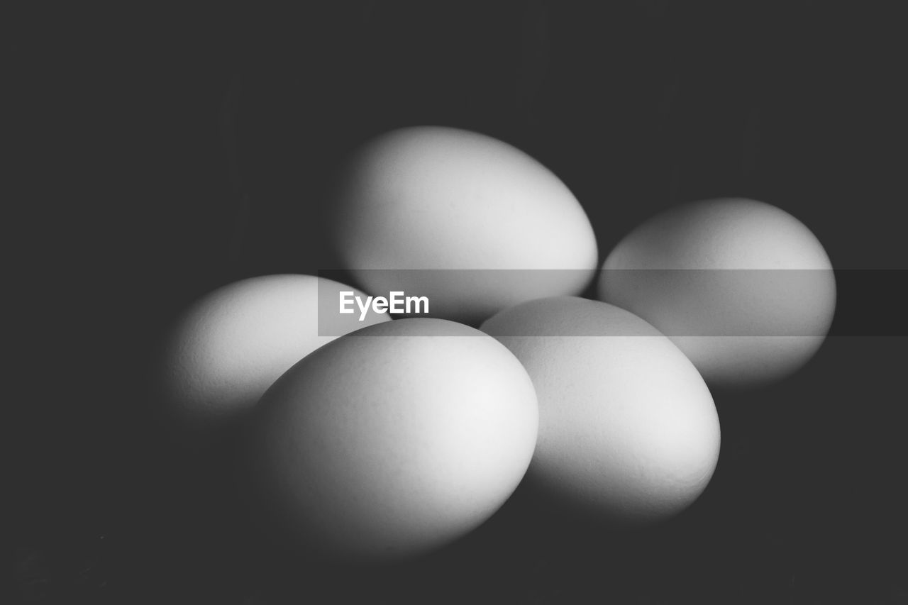Close-up of eggs on black background