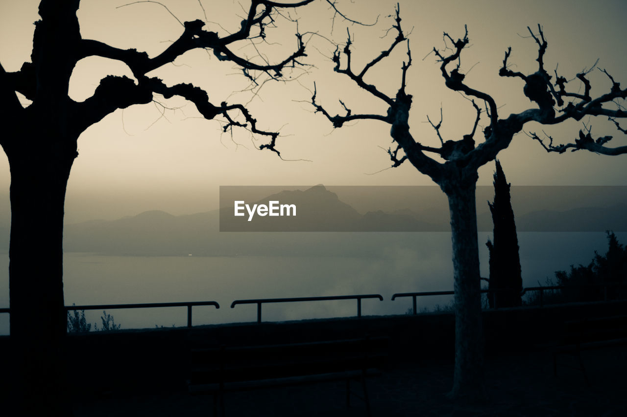 tree, sky, silhouette, beauty in nature, mountain, scenics - nature, tranquility, plant, tranquil scene, nature, sunset, railing, no people, tree trunk, branch, trunk, water, mountain range, bare tree, outdoors
