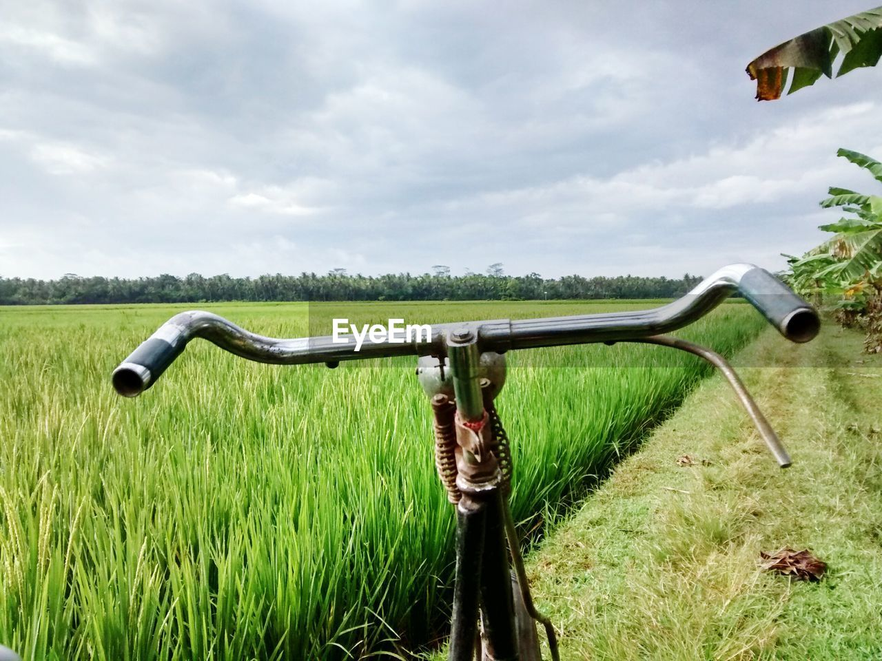 Cropped image of bicycle on grassy field against cloudy sky