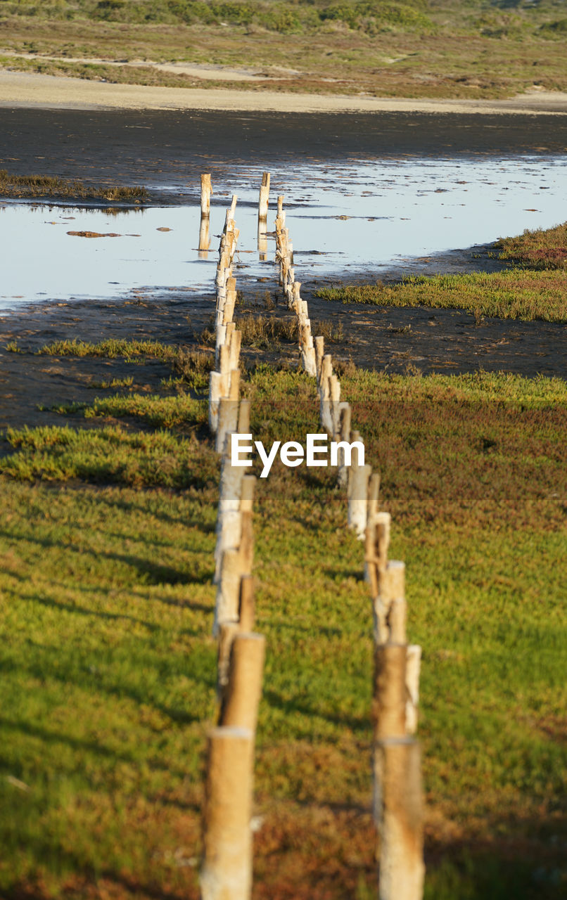 Wooden posts on field by lake
