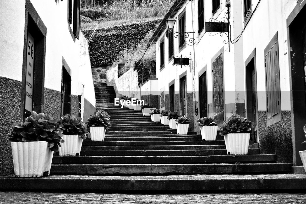 steps, architecture, steps and staircases, built structure, staircase, building exterior, the way forward, stairs, day, outdoors, real people
