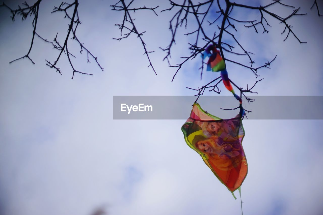 multi colored, flag, hanging, kite - toy, cultures, wind, celebration, sky, tradition, outdoors, no people, day, tree