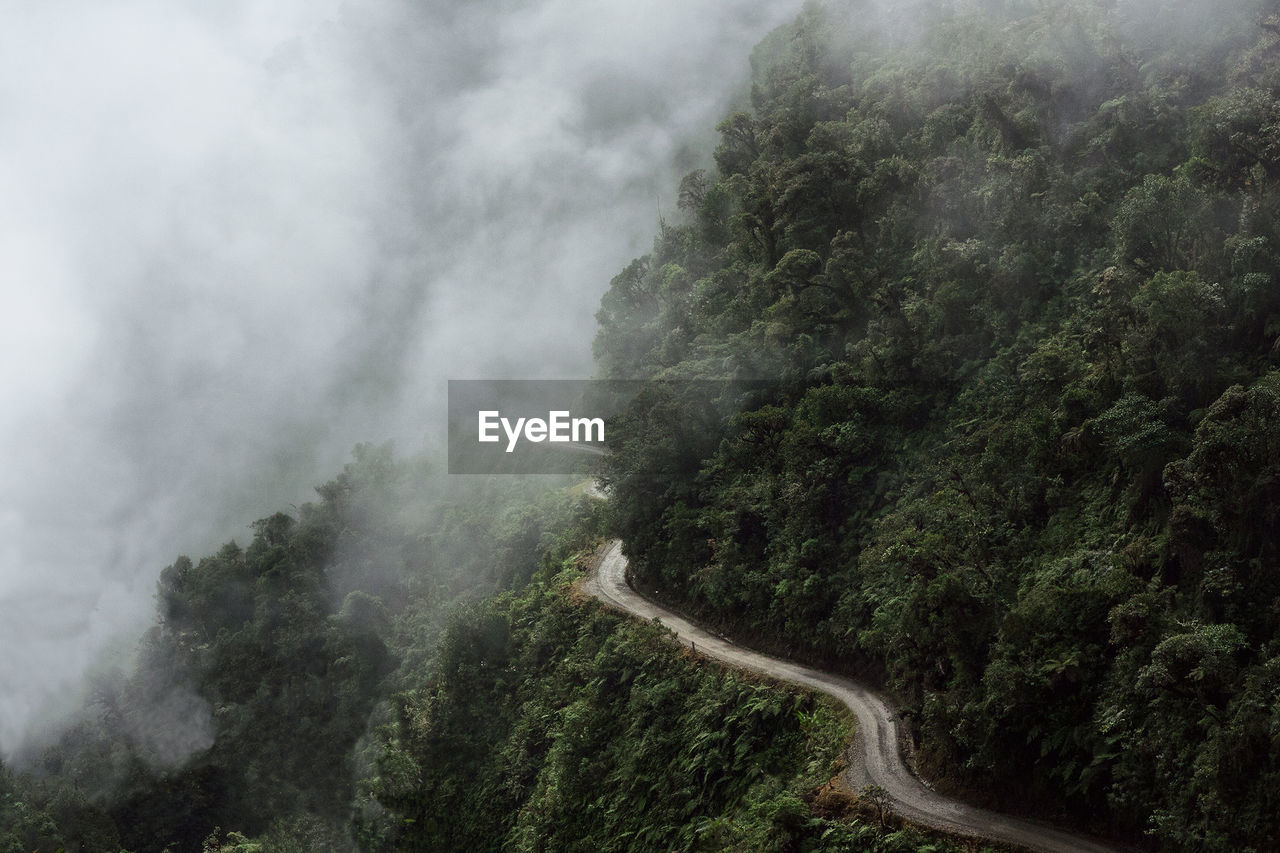 Scenic View Of Road Going Through Foggy Landscape