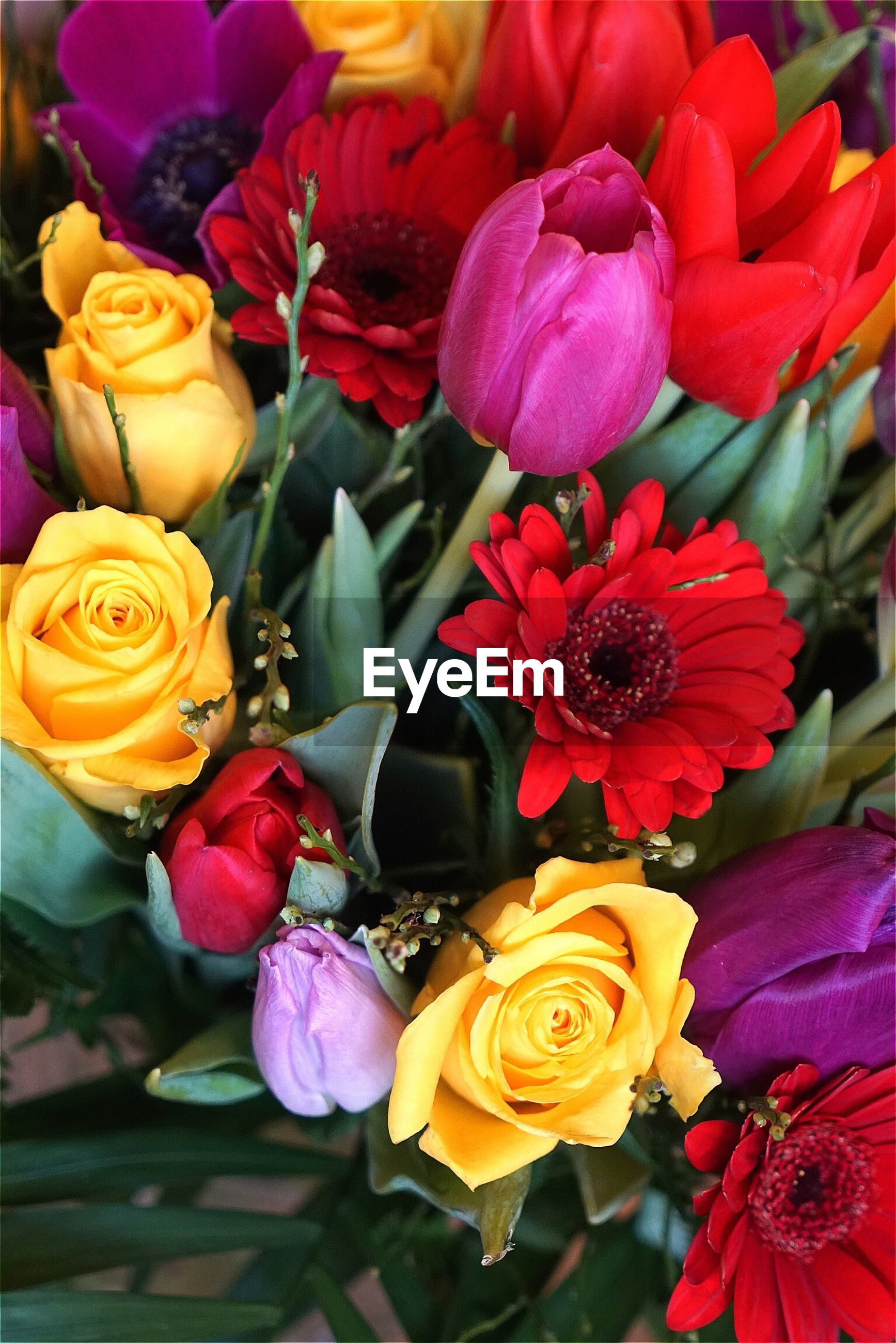Directly above shot of flower bouquet