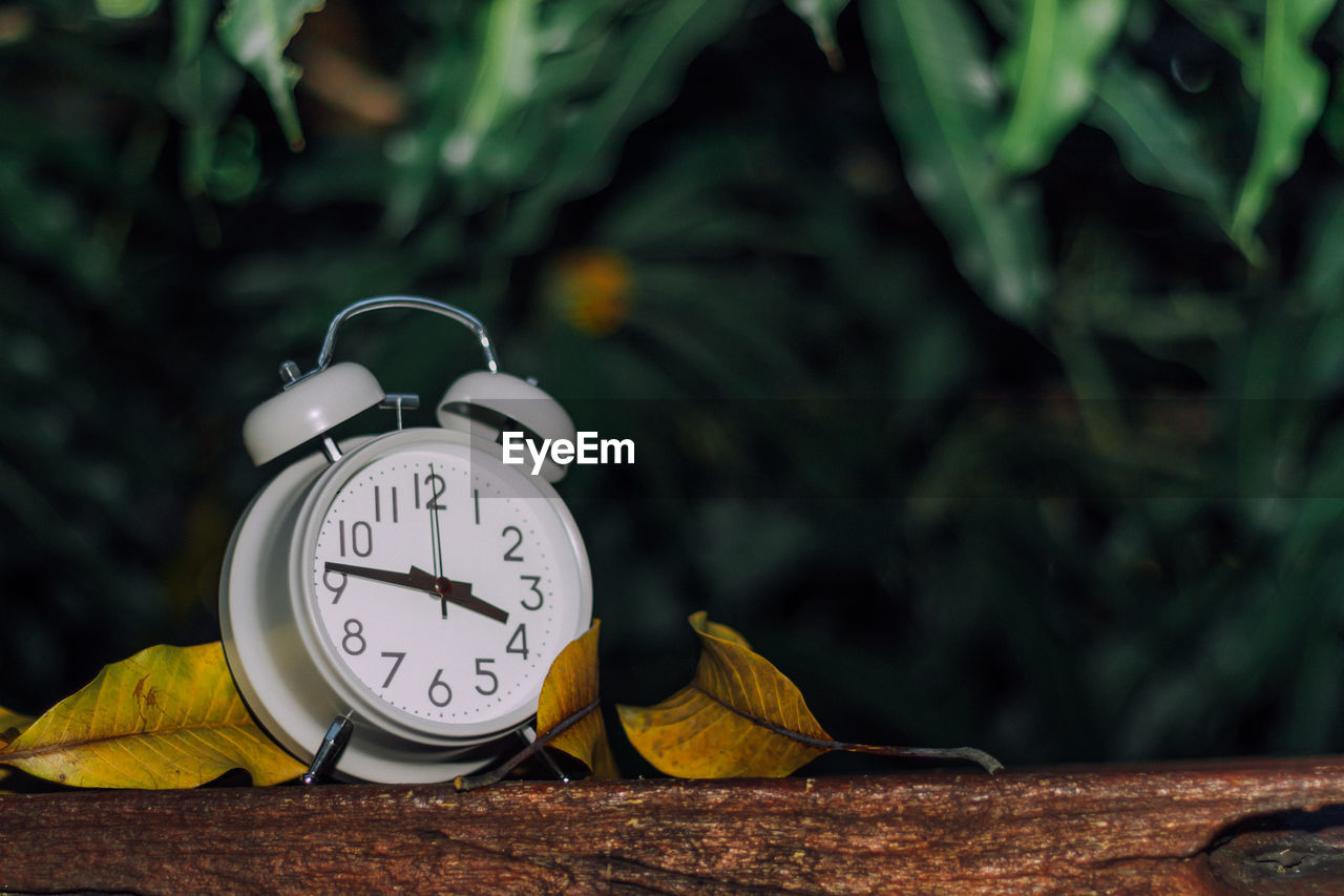 Close-up of alarm clock on wood during autumn