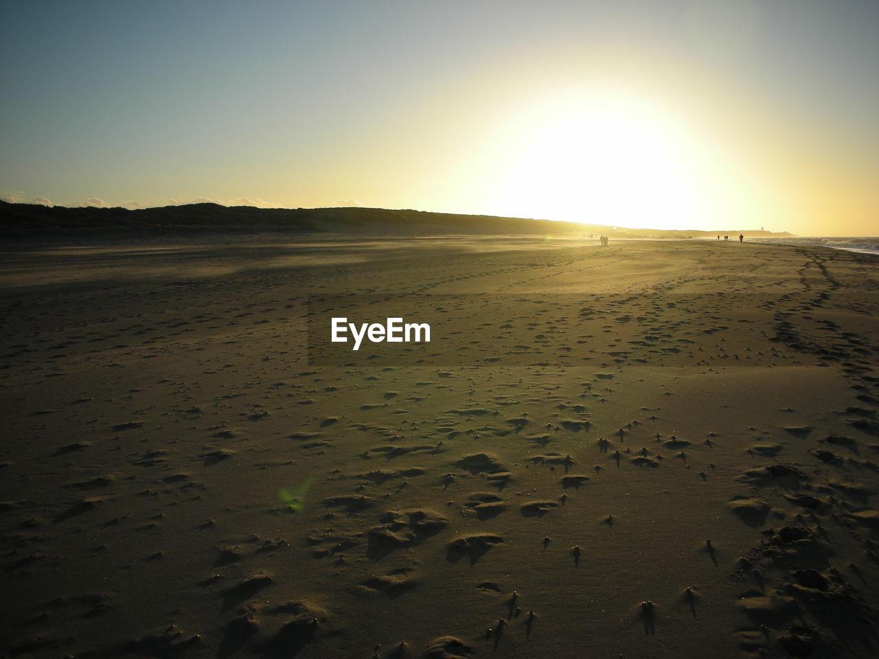 Landscape of sandy beach at sundown