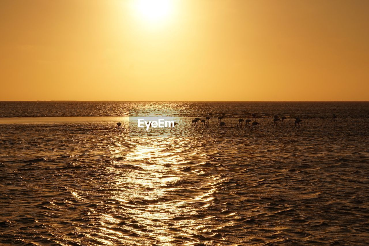 water, sky, sunset, scenics - nature, sea, beauty in nature, tranquil scene, sun, tranquility, sunlight, horizon over water, reflection, horizon, idyllic, orange color, nature, waterfront, non-urban scene, no people, outdoors, bright