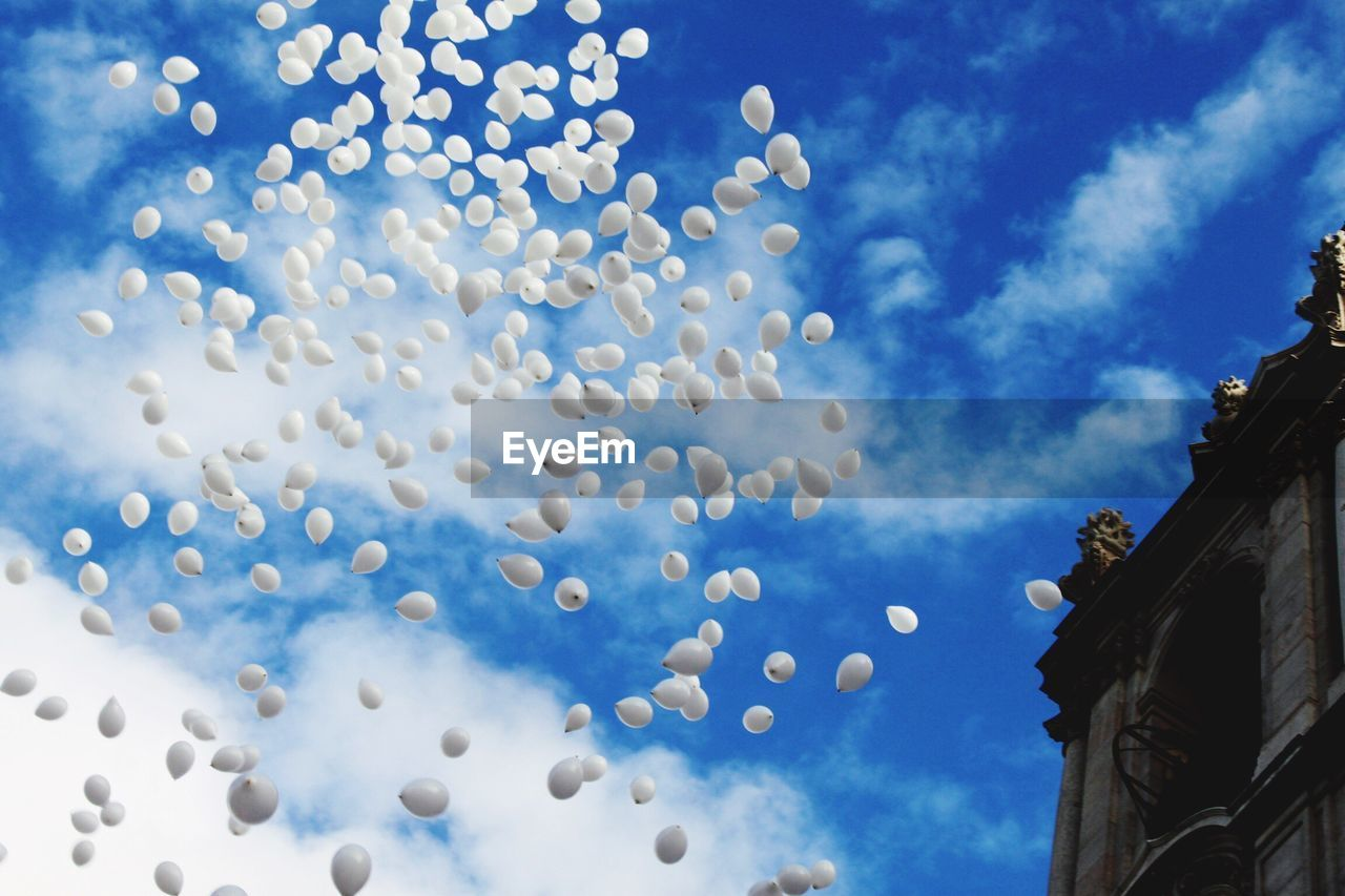 sky, low angle view, blue, cloud - sky, architecture, celebration, no people, built structure, nature, day, building exterior, outdoors, building, balloon, decoration, white color, flying, tree, mid-air, plant, ornate