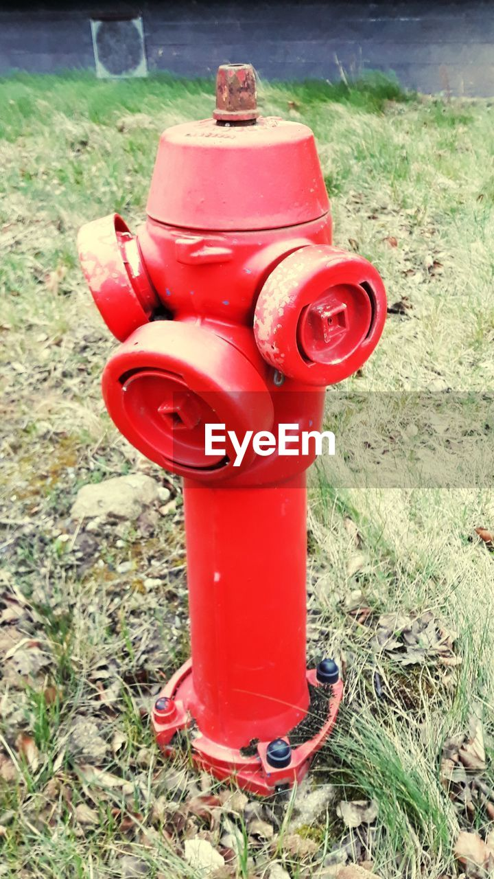 grass, red, day, outdoors, fire hydrant, no people, field, nature, close-up