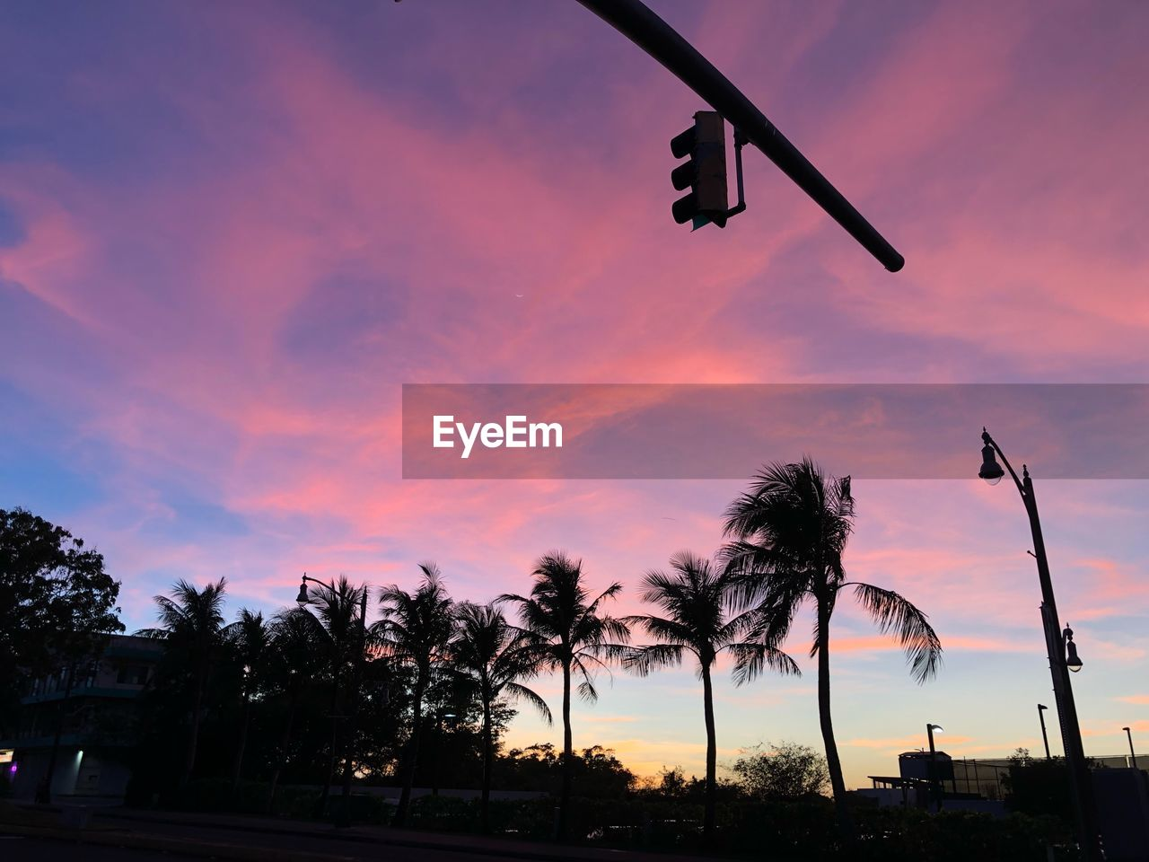 sunset, sky, tree, plant, cloud - sky, nature, silhouette, low angle view, beauty in nature, orange color, lighting equipment, no people, scenics - nature, street light, street, palm tree, outdoors, architecture, sign, tropical climate