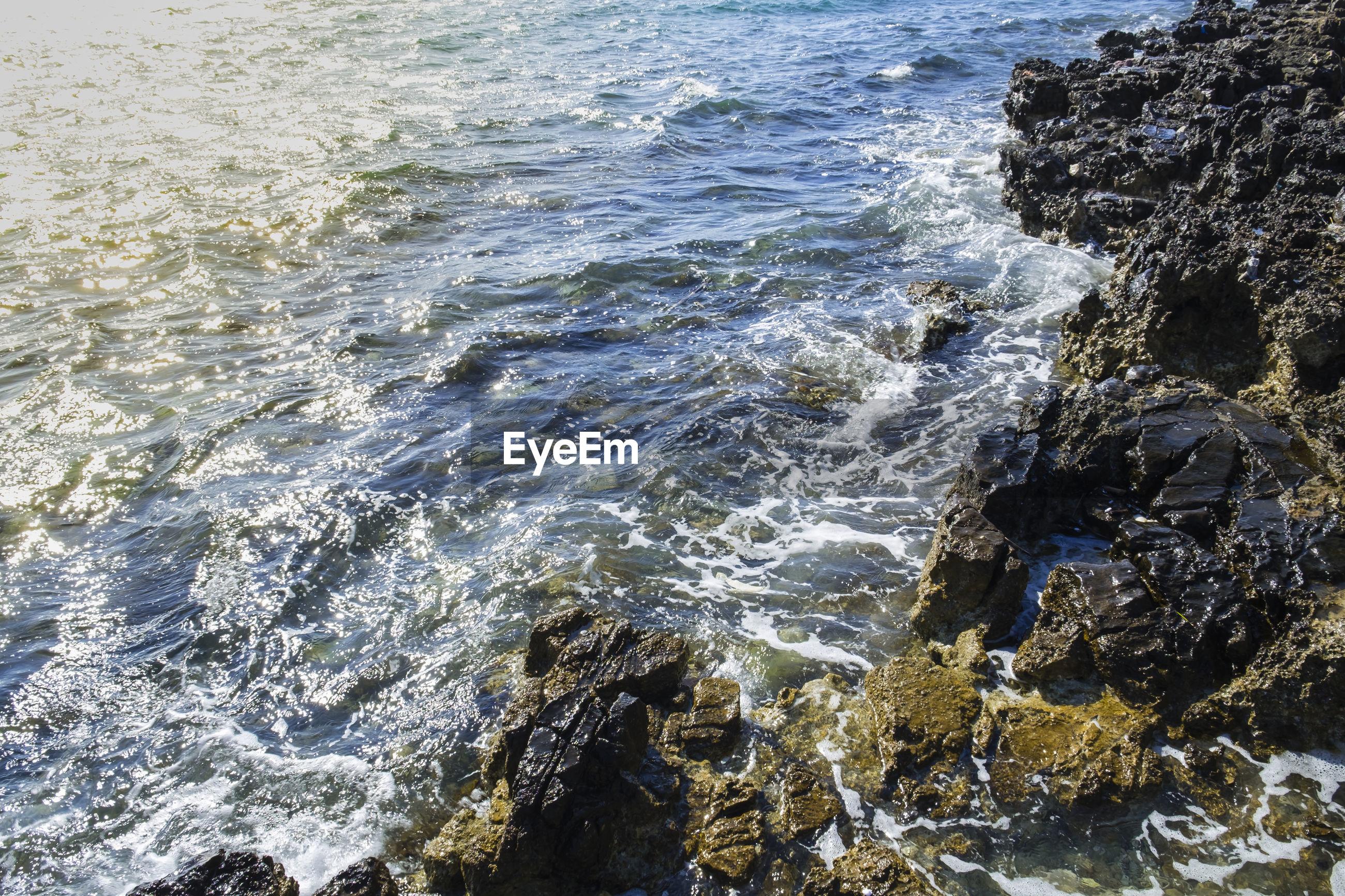 High angle view of rock at seashore
