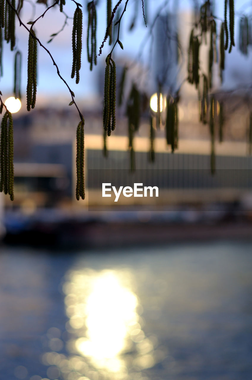 water, no people, nature, hanging, focus on foreground, waterfront, outdoors, river, built structure, architecture, day, beauty in nature, selective focus, reflection, sunset, close-up, scenics - nature, sky