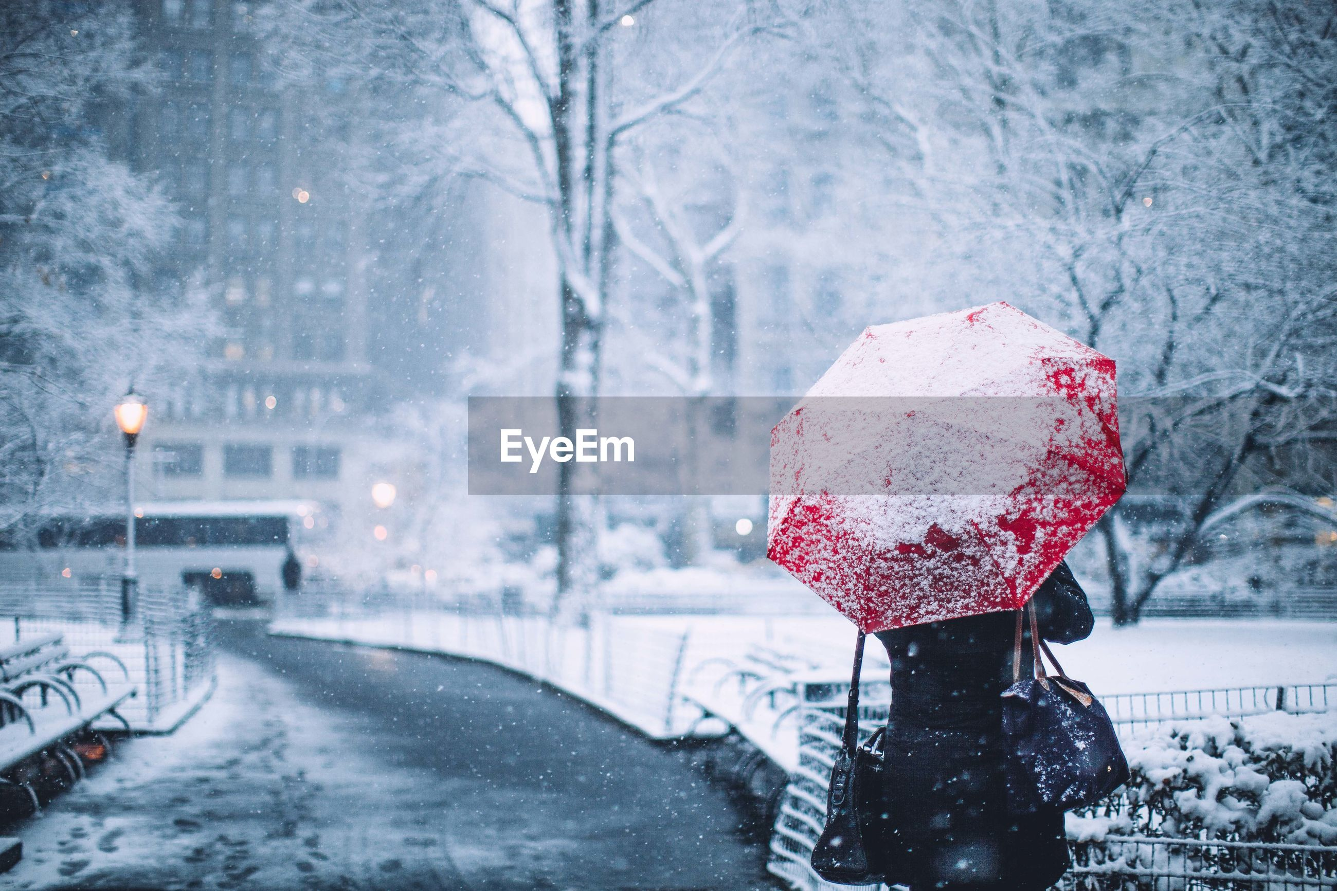 Rear view of woman with umbrella in snow
