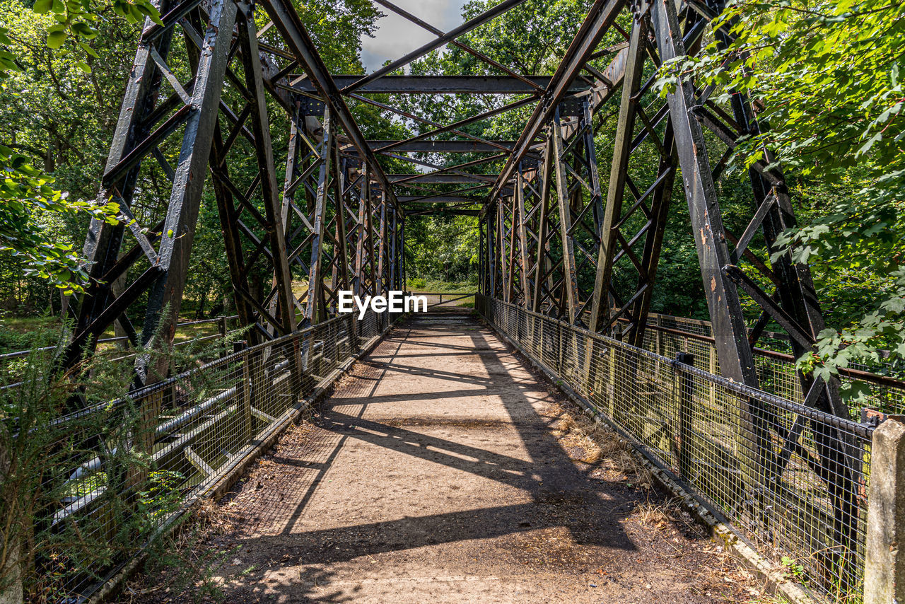 tree, plant, the way forward, direction, architecture, nature, connection, metal, bridge, built structure, day, no people, railing, bridge - man made structure, outdoors, green color, forest, footpath, sunlight, land, diminishing perspective, footbridge