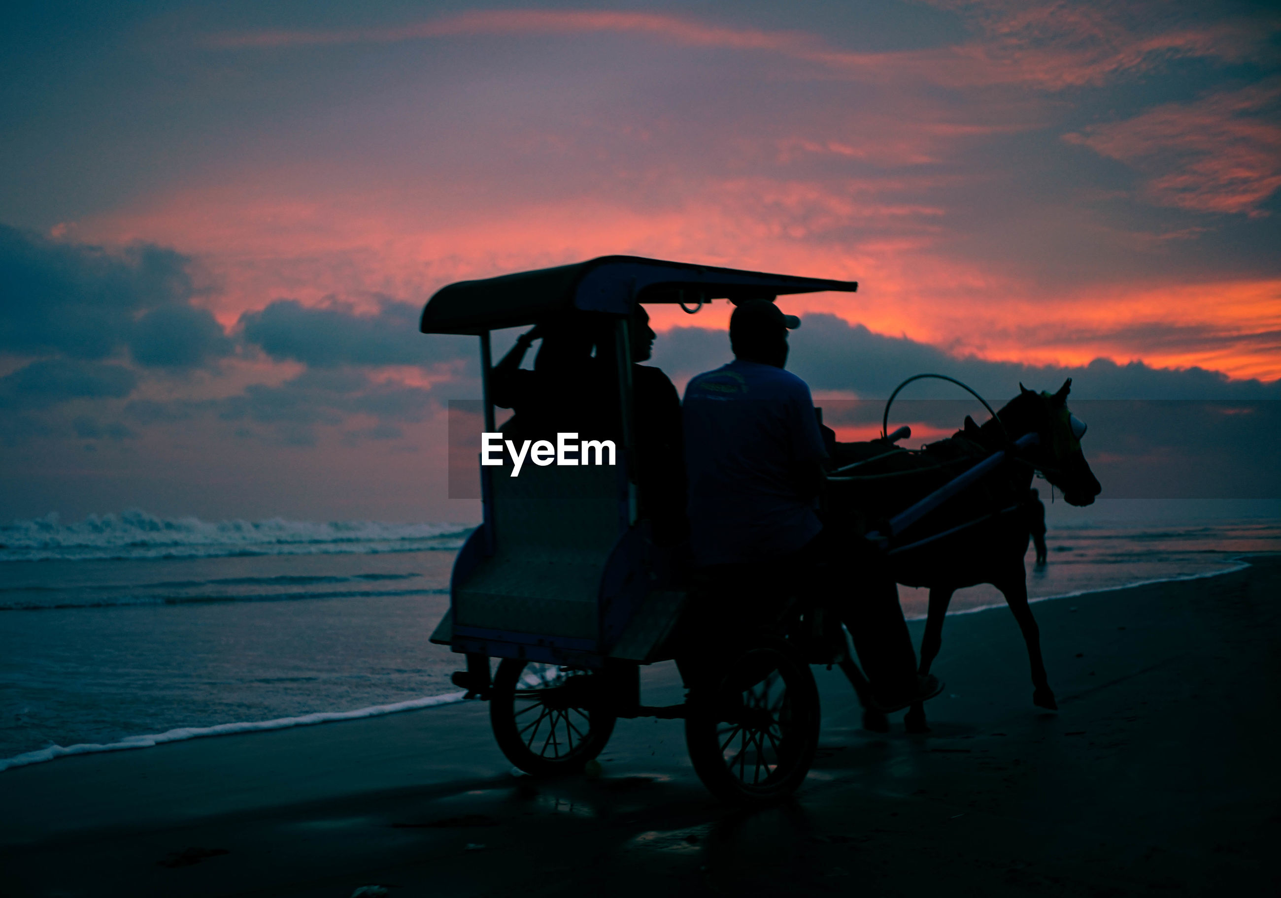 Silhouette people on horse cart at beach during sunset