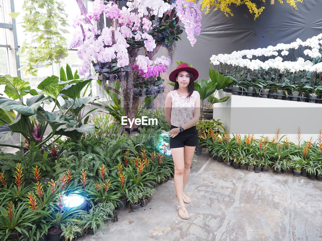 plant, looking at camera, one person, portrait, real people, leisure activity, young adult, standing, lifestyles, front view, full length, flowering plant, casual clothing, young women, nature, growth, smiling, day, outdoors, beautiful woman