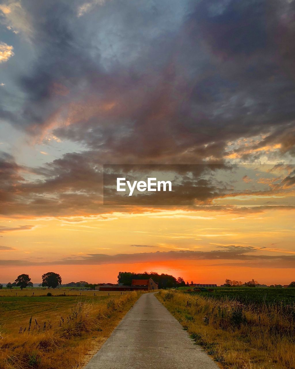cloud - sky, sky, sunset, scenics - nature, landscape, environment, the way forward, field, beauty in nature, direction, plant, orange color, diminishing perspective, tranquility, nature, land, tranquil scene, grass, road, no people, outdoors