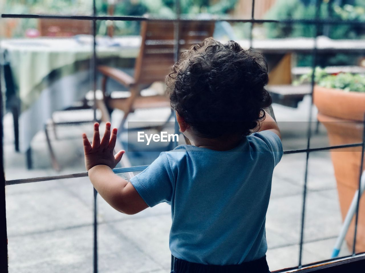 Rear view of boy standing by glass window