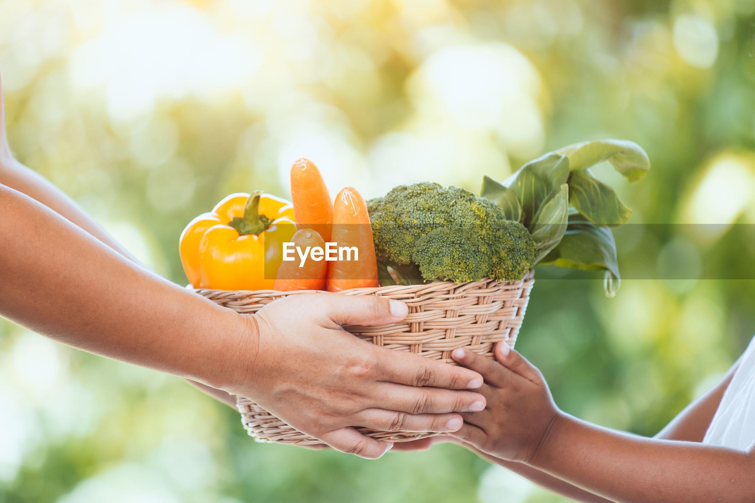 Cropped hands of vegetables in wicker basket