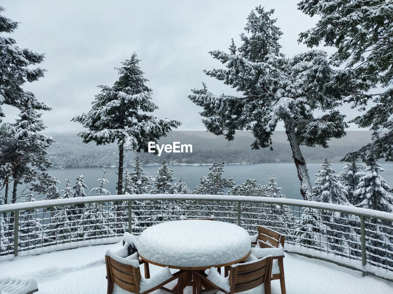 tree, plant, seat, cold temperature, nature, chair, winter, snow, table, absence, no people, beauty in nature, day, scenics - nature, empty, water, tranquility, tranquil scene, railing, outdoors, snowcapped mountain