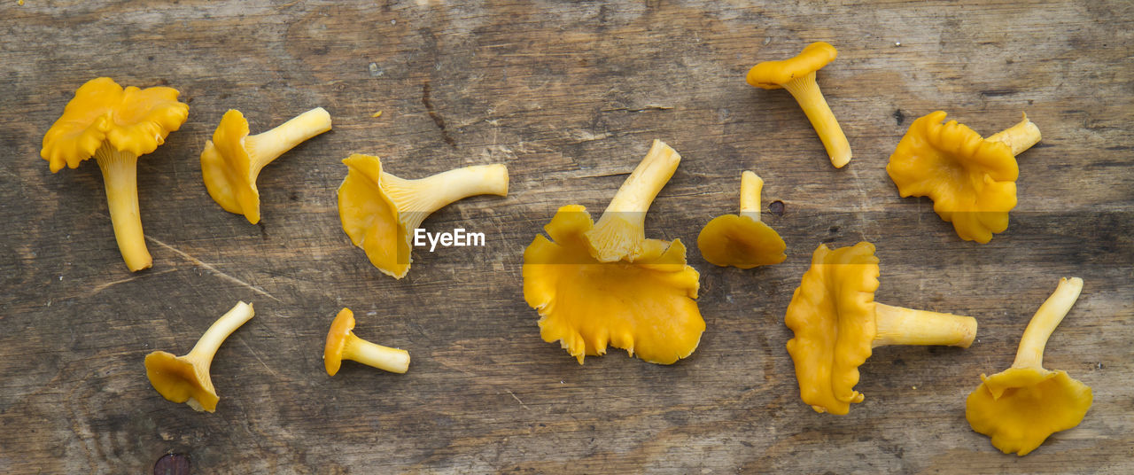 High angle view of mushrooms on table