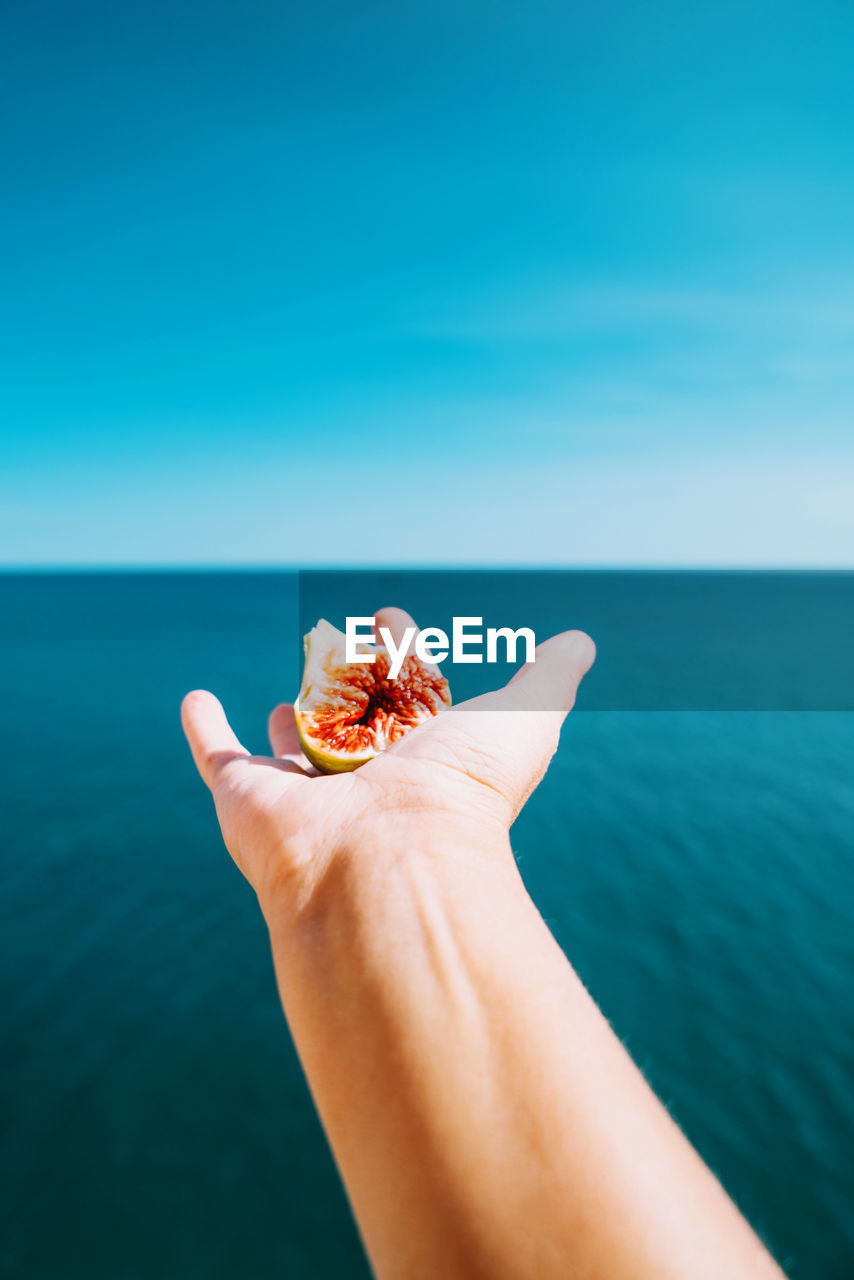 Hand holding fig with sea on the background