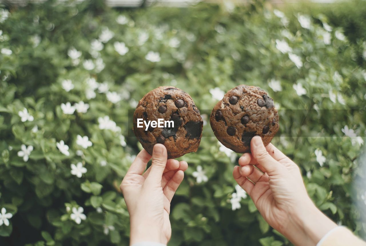 Midsection of person holding cookie against plants