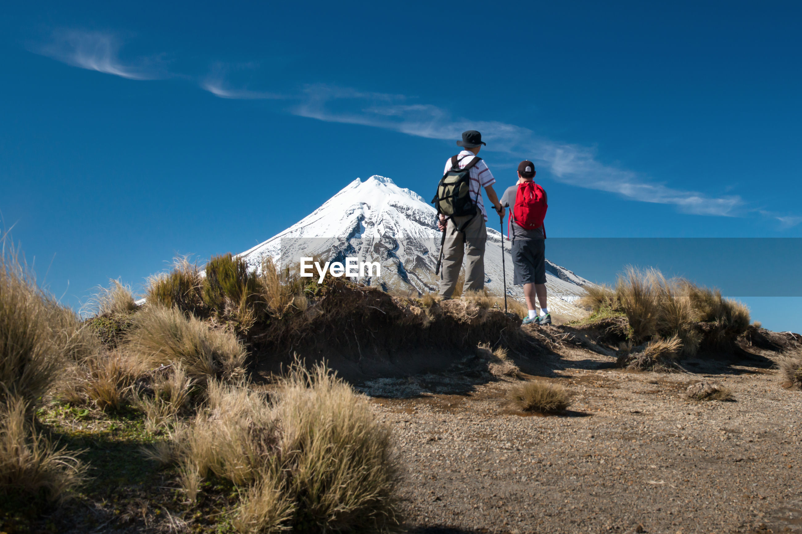 Rear view of hikers standing on mountain