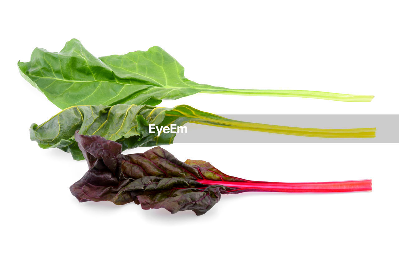 white background, studio shot, food and drink, food, vegetable, freshness, indoors, still life, cut out, close-up, no people, healthy eating, wellbeing, plant part, green color, leaf, raw food, meat, leaf vegetable, root vegetable, common beet, vegetarian food