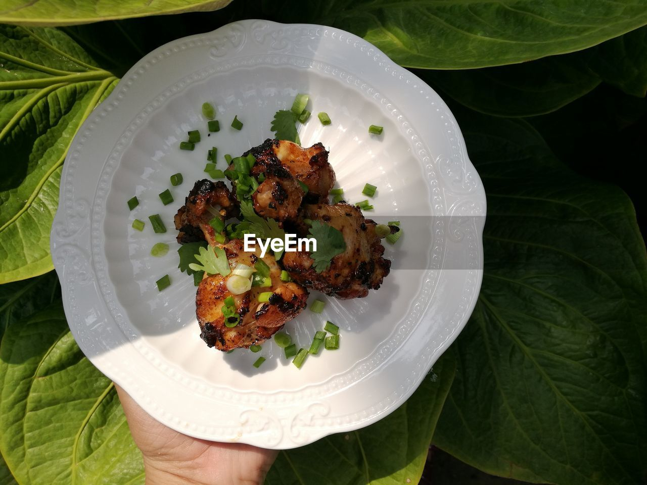 Directly above shot of hand holding food in plate