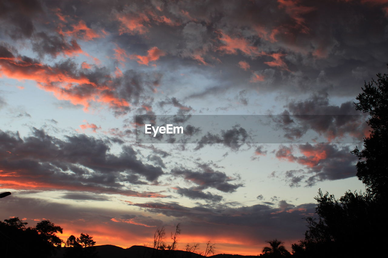sky, cloud - sky, sunset, beauty in nature, silhouette, scenics - nature, orange color, tree, plant, tranquil scene, tranquility, nature, no people, idyllic, low angle view, dramatic sky, non-urban scene, outdoors, overcast