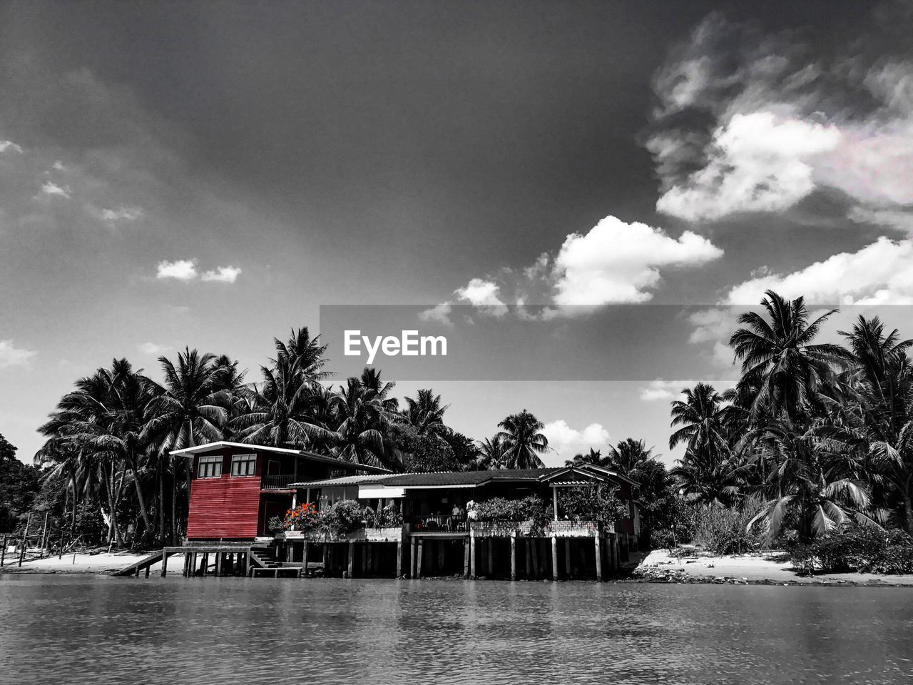 tree, sky, water, built structure, no people, outdoors, nature, day, palm tree, cloud - sky, architecture, beauty in nature