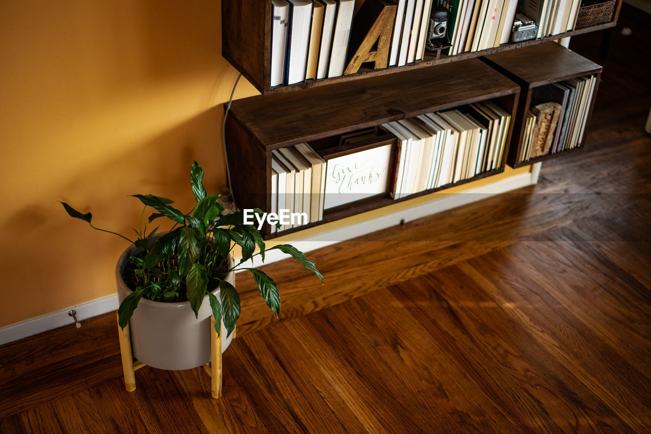 wood - material, indoors, table, potted plant, plant, home interior, hardwood floor, no people, wood, window, shelf, book, publication, flooring, high angle view, seat, nature, bookshelf, absence, day, houseplant