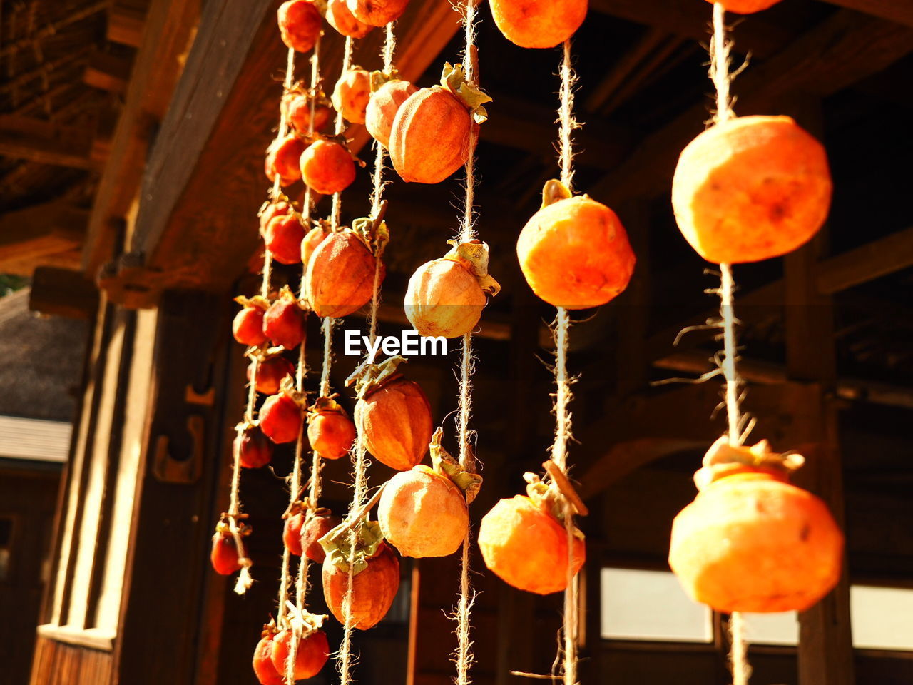 Persimmons Tied In Threads Hanging At Entrance Of Japanese Temple