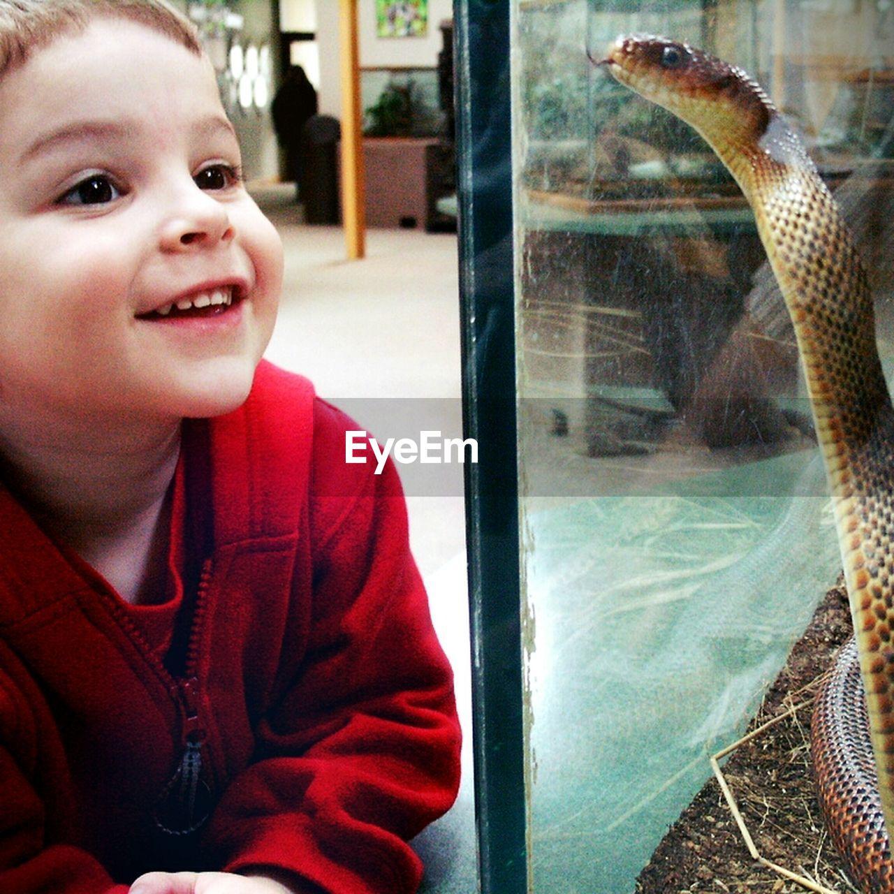 Boy smiling at snake