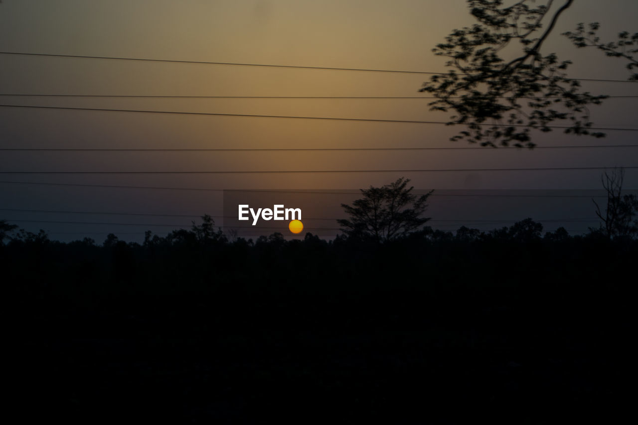 silhouette, sunset, sky, tree, electricity, plant, cable, beauty in nature, no people, tranquility, nature, outdoors, orange color, power line, scenics - nature, sun, tranquil scene, technology, environment, dark, power supply