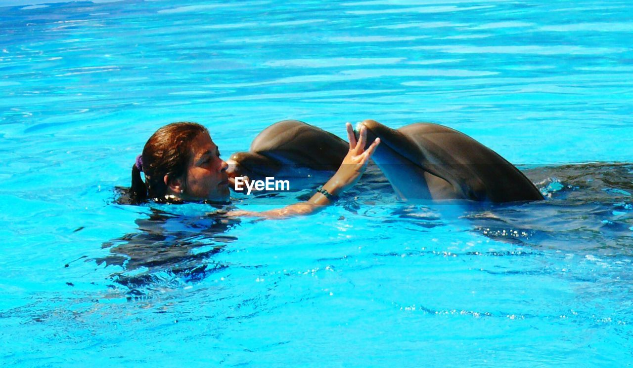 Woman touching dolphins while swimming in pool