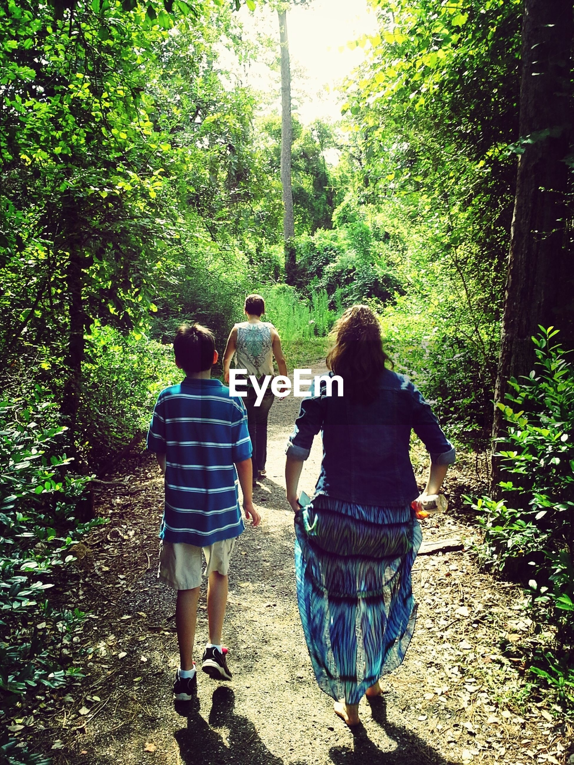 tree, lifestyles, rear view, leisure activity, full length, togetherness, casual clothing, bonding, men, love, walking, boys, person, forest, childhood, green color, growth, family