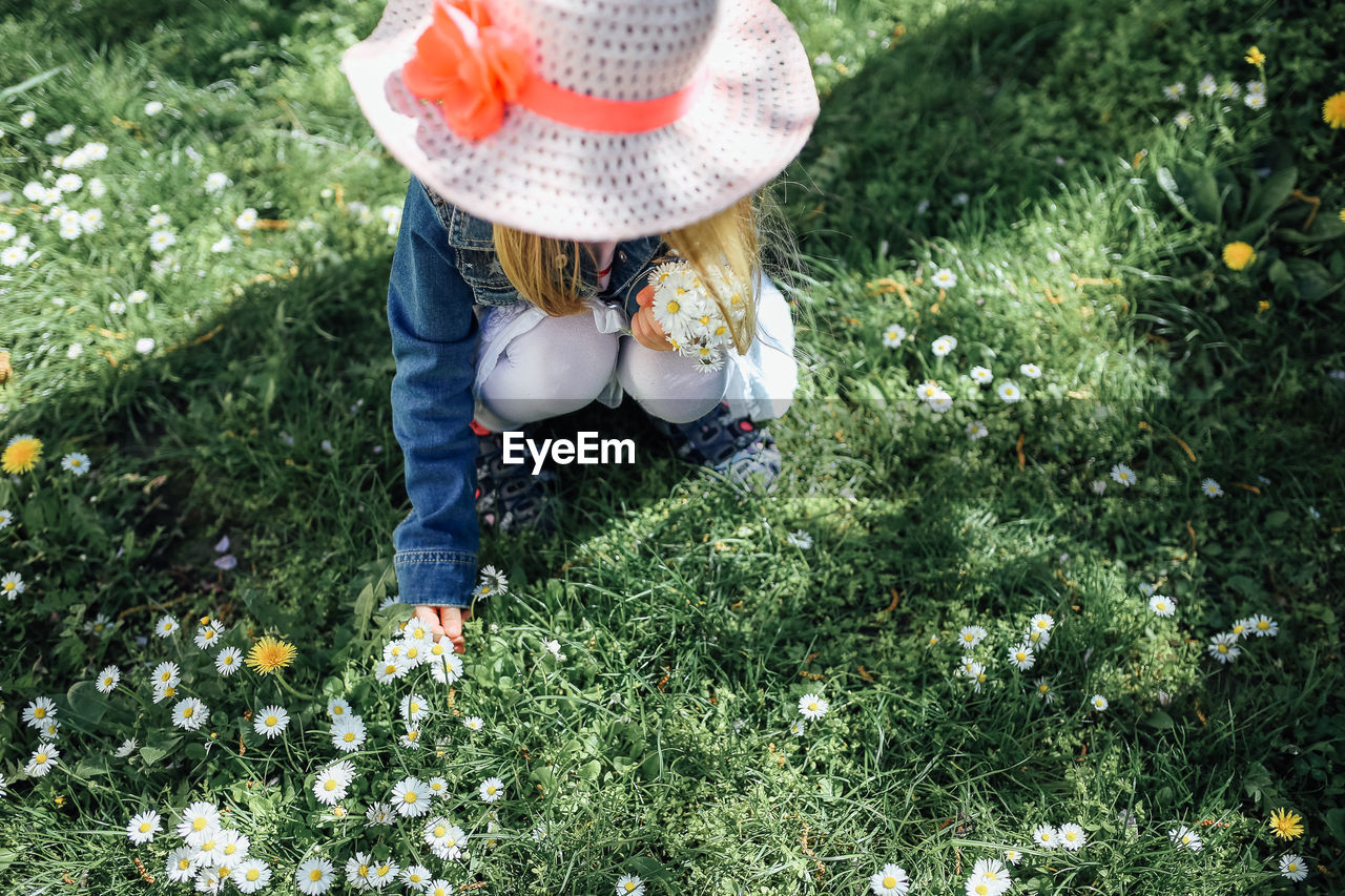 plant, hat, one person, day, grass, real people, child, flowering plant, flower, nature, field, growth, green color, casual clothing, leisure activity, land, clothing, women, childhood, outdoors