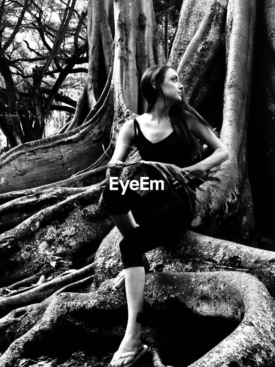 Woman looking away while sitting by tree trunk in forest
