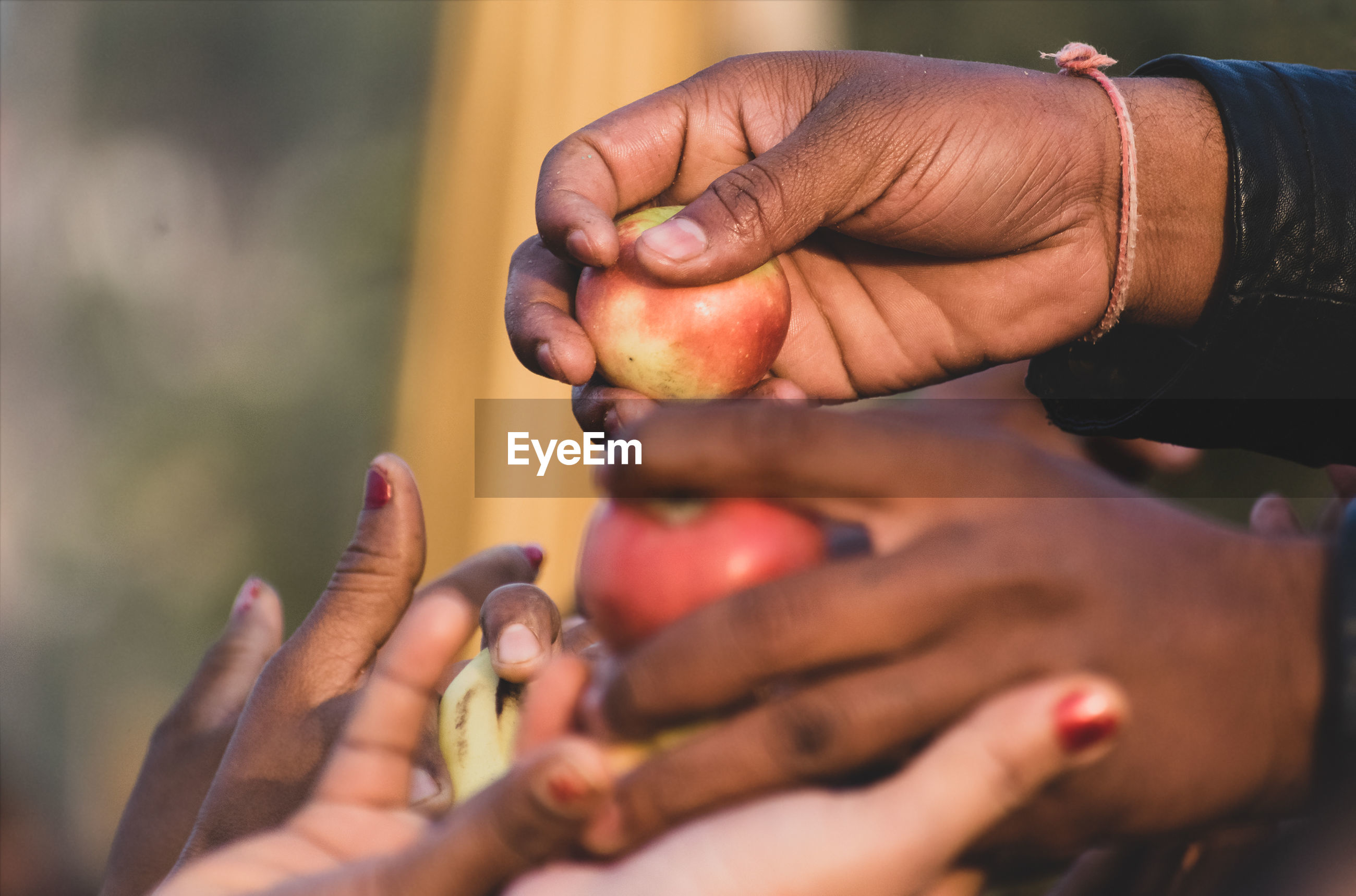 A person giving apples to people from hands to hands in outside close up